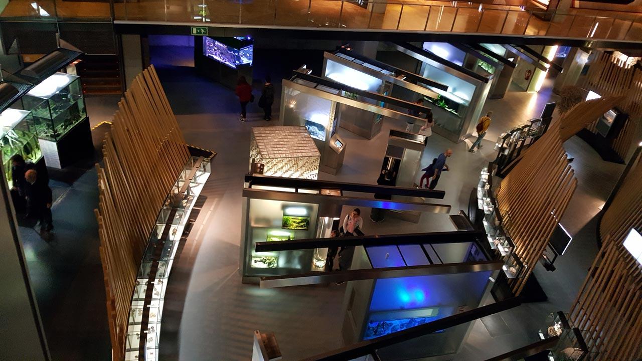 Wissenschaftliche Museum Barcelona
