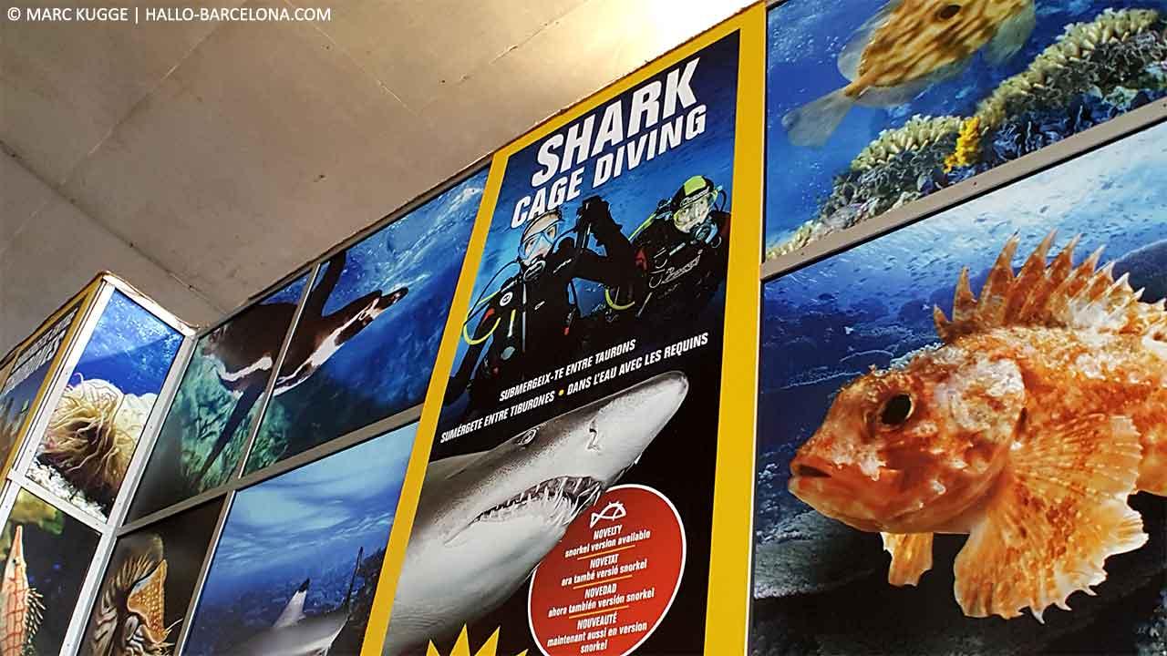 Aquarium Barcelona Preise