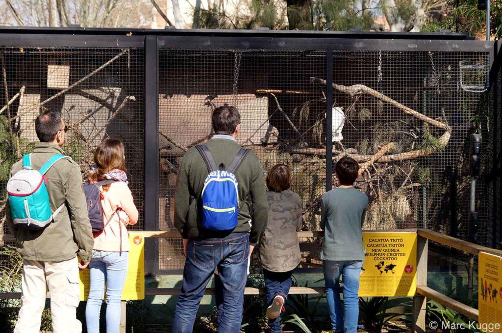 Der Zoo in Barcelona